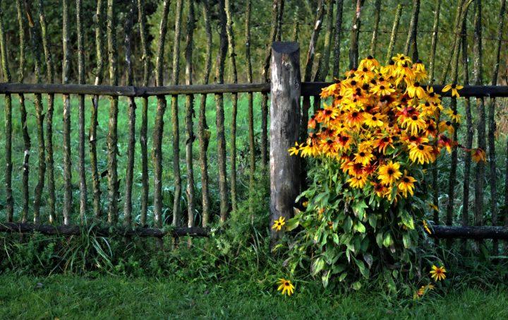 Clôtures & portails